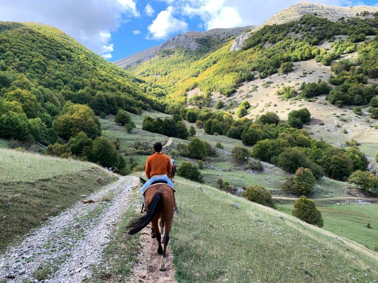 Passeggiata a cavallo di un'ora.