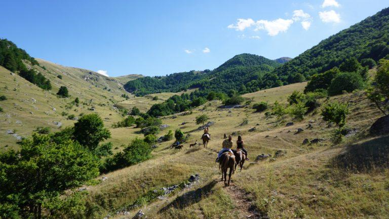 Passeggiata a cavallo.