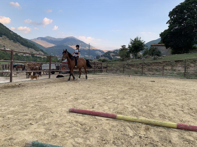 Lezione di equitazione.