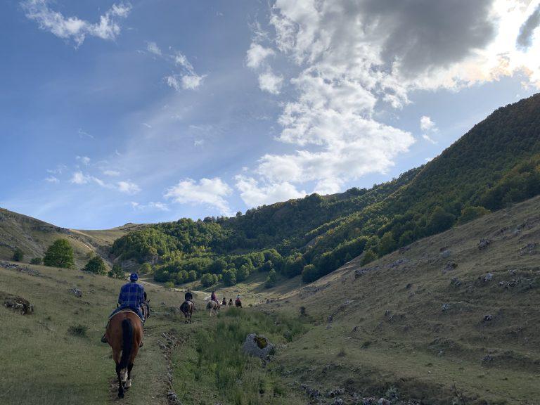 Passeggiata a cavallo di una giornata